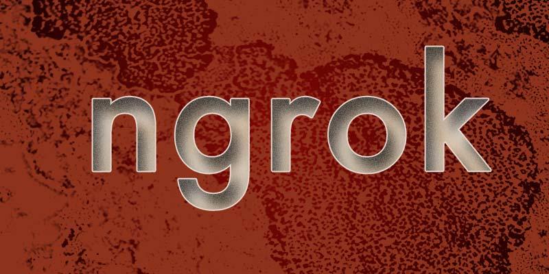 ngrok header graphic